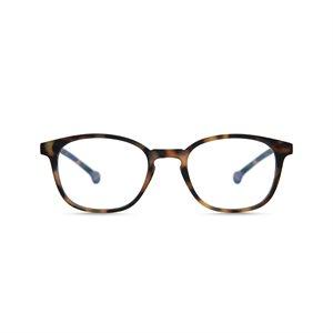 Reading / Screen Glasses Sena Tortoise
