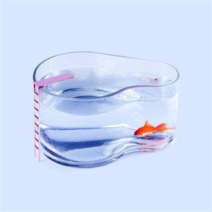 Fishpool